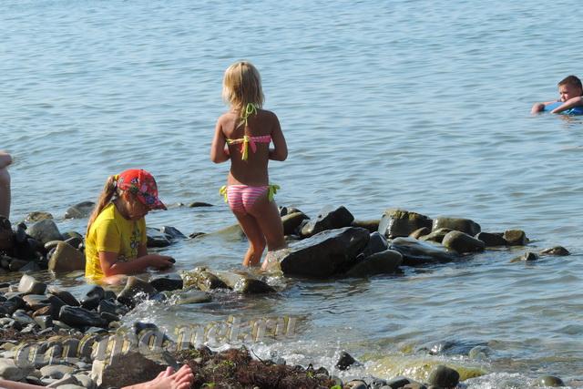 Анапа пляж на Высоком берегу первая половина августа дети